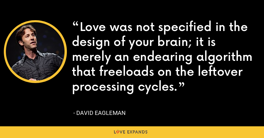 Love was not specified in the design of your brain; it is merely an endearing algorithm that freeloads on the leftover processing cycles. - David Eagleman