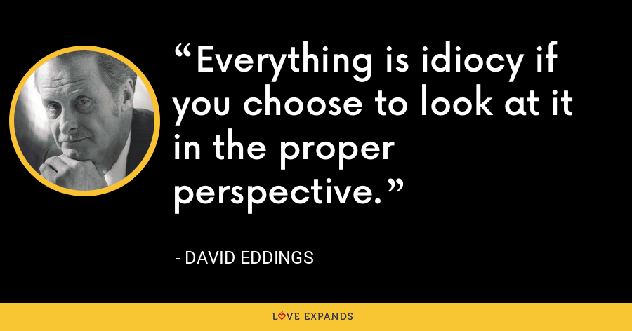 Everything is idiocy if you choose to look at it in the proper perspective. - David Eddings