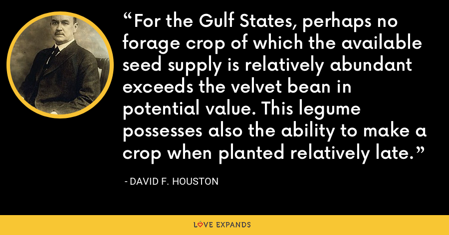 For the Gulf States, perhaps no forage crop of which the available seed supply is relatively abundant exceeds the velvet bean in potential value. This legume possesses also the ability to make a crop when planted relatively late. - David F. Houston