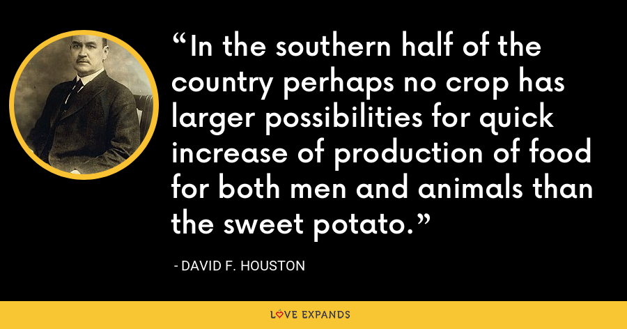 In the southern half of the country perhaps no crop has larger possibilities for quick increase of production of food for both men and animals than the sweet potato. - David F. Houston