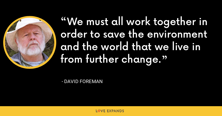 We must all work together in order to save the environment and the world that we live in from further change. - David Foreman