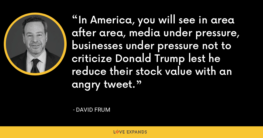 In America, you will see in area after area, media under pressure, businesses under pressure not to criticize Donald Trump lest he reduce their stock value with an angry tweet. - David Frum