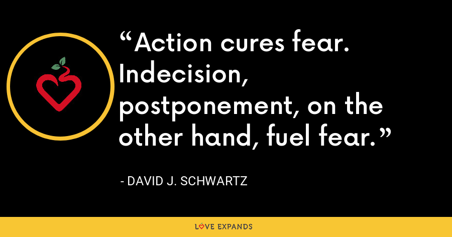 Action cures fear. Indecision, postponement, on the other hand, fuel fear. - David J. Schwartz
