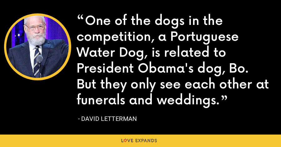 One of the dogs in the competition, a Portuguese Water Dog, is related to President Obama's dog, Bo. But they only see each other at funerals and weddings. - David Letterman