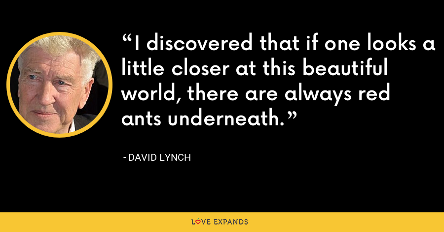I discovered that if one looks a little closer at this beautiful world, there are always red ants underneath. - David Lynch