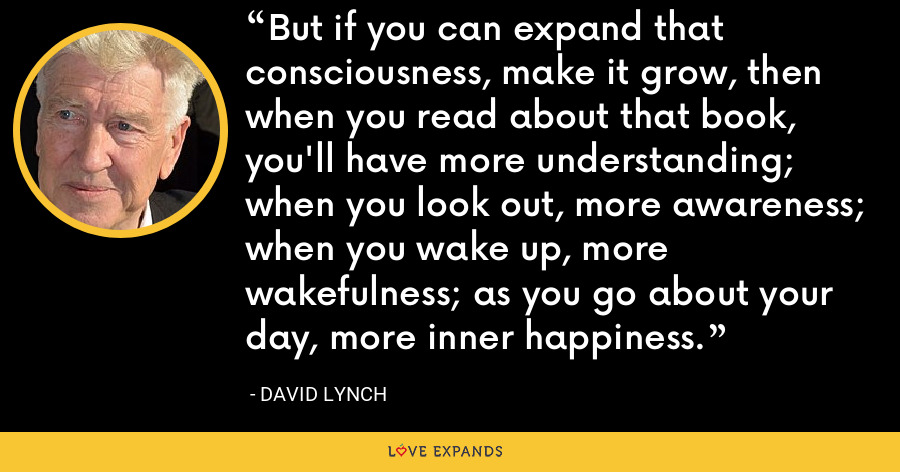 But if you can expand that consciousness, make it grow, then when you read about that book, you'll have more understanding; when you look out, more awareness; when you wake up, more wakefulness; as you go about your day, more inner happiness. - David Lynch