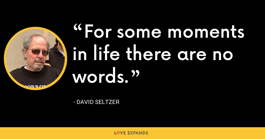 For some moments in life there are no words. - David Seltzer
