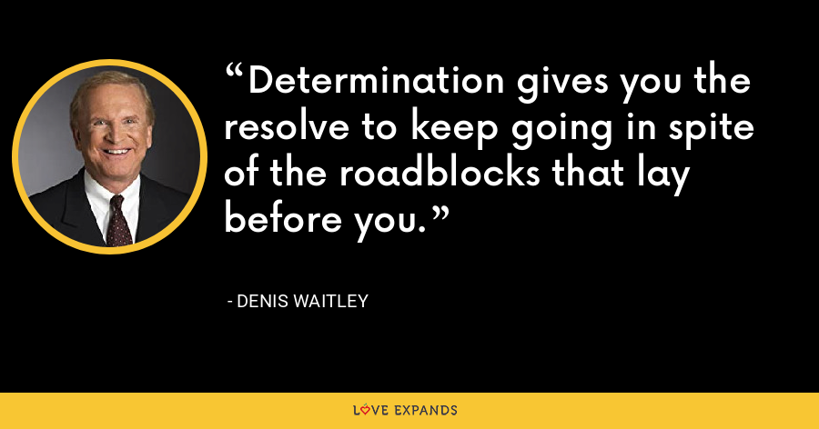 Determination gives you the resolve to keep going in spite of the roadblocks that lay before you. - Denis Waitley