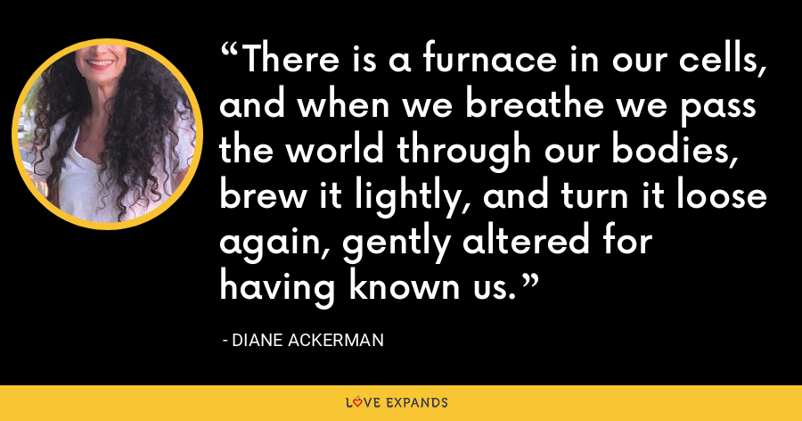 There is a furnace in our cells, and when we breathe we pass the world through our bodies, brew it lightly, and turn it loose again, gently altered for having known us. - Diane Ackerman