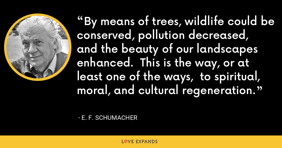 By means of trees, wildlife could be conserved, pollution decreased,  and the beauty of our landscapes enhanced.  This is the way, or at least one of the ways,  to spiritual, moral, and cultural regeneration. - E. F. Schumacher
