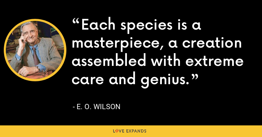 Each species is a masterpiece, a creation assembled with extreme care and genius. - E. O. Wilson