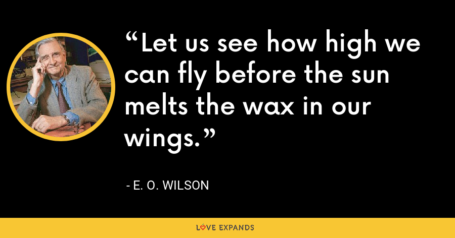 Let us see how high we can fly before the sun melts the wax in our wings. - E. O. Wilson