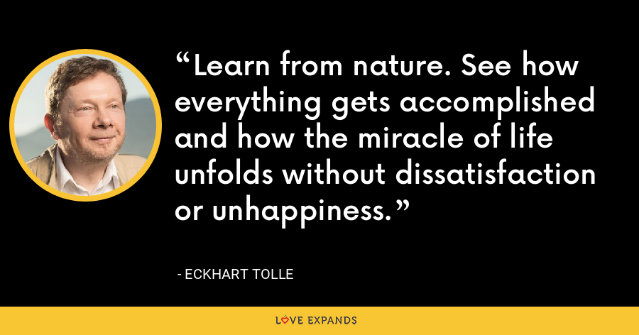 Learn from nature. See how everything gets accomplished and how the miracle of life unfolds without dissatisfaction or unhappiness. - Eckhart Tolle