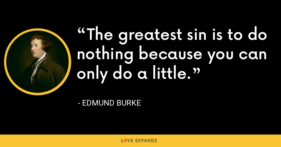 The greatest sin is to do nothing because you can only do a little. - Edmund Burke