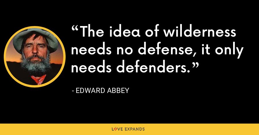 The idea of wilderness needs no defense, it only needs defenders. - Edward Abbey
