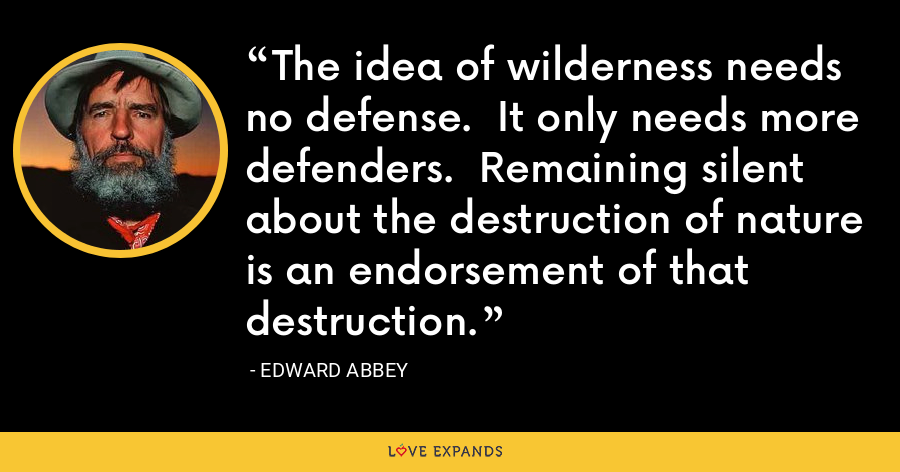 The idea of wilderness needs no defense.  It only needs more defenders.  Remaining silent about the destruction of nature is an endorsement of that destruction. - Edward Abbey