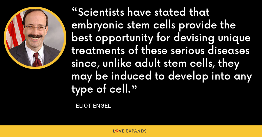 Scientists have stated that embryonic stem cells provide the best opportunity for devising unique treatments of these serious diseases since, unlike adult stem cells, they may be induced to develop into any type of cell. - Eliot Engel