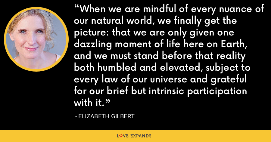 When we are mindful of every nuance of our natural world, we finally get the picture: that we are only given one dazzling moment of life here on Earth, and we must stand before that reality both humbled and elevated, subject to every law of our universe and grateful for our brief but intrinsic participation with it. - Elizabeth Gilbert