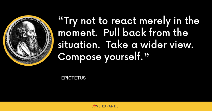 Try not to react merely in the moment.  Pull back from the situation.  Take a wider view.  Compose yourself. - Epictetus