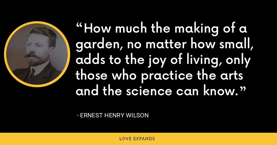 How much the making of a garden, no matter how small, adds to the joy of living, only those who practice the arts and the science can know. - Ernest Henry Wilson