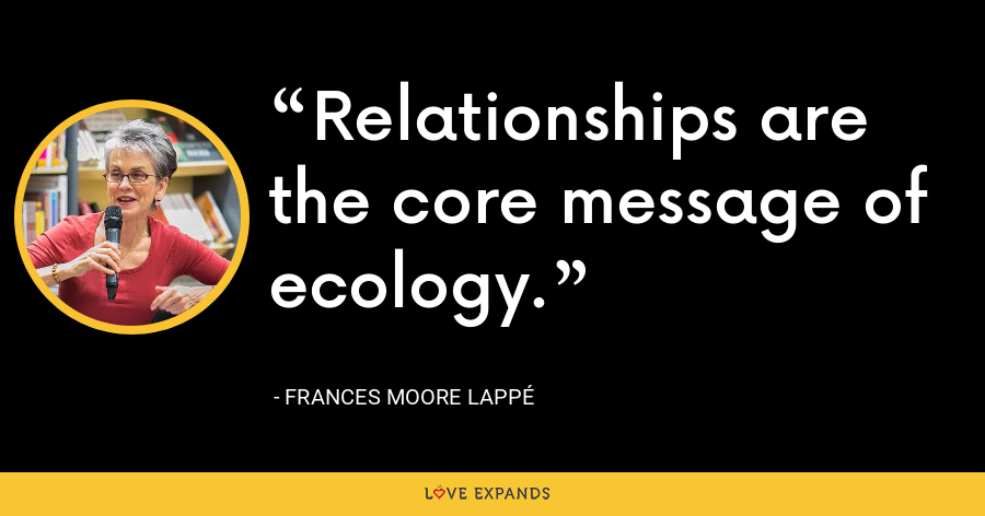 Relationships are the core message of ecology. - Frances Moore Lappé