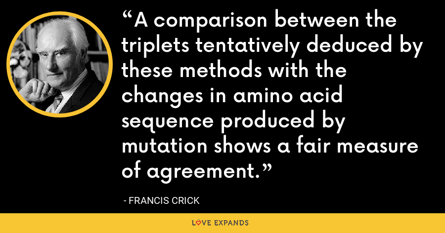A comparison between the triplets tentatively deduced by these methods with the changes in amino acid sequence produced by mutation shows a fair measure of agreement. - Francis Crick