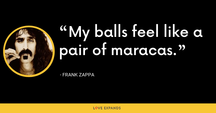 My balls feel like a pair of maracas. - Frank Zappa