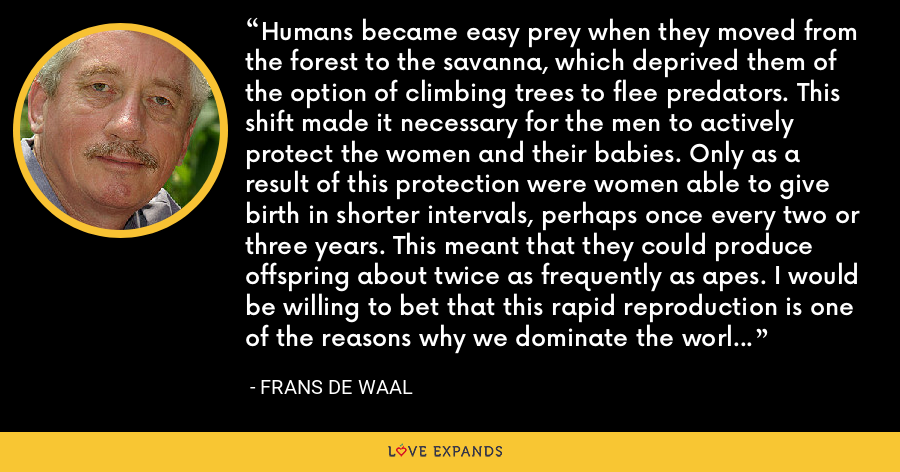 Humans became easy prey when they moved from the forest to the savanna, which deprived them of the option of climbing trees to flee predators. This shift made it necessary for the men to actively protect the women and their babies. Only as a result of this protection were women able to give birth in shorter intervals, perhaps once every two or three years. This meant that they could produce offspring about twice as frequently as apes. I would be willing to bet that this rapid reproduction is one of the reasons why we dominate the world today, and not the apes. - Frans de Waal