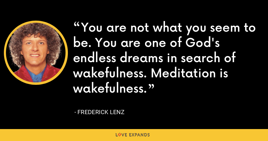 You are not what you seem to be. You are one of God's endless dreams in search of wakefulness. Meditation is wakefulness. - Frederick Lenz
