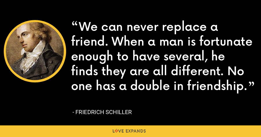 We can never replace a friend. When a man is fortunate enough to have several, he finds they are all different. No one has a double in friendship. - Friedrich Schiller