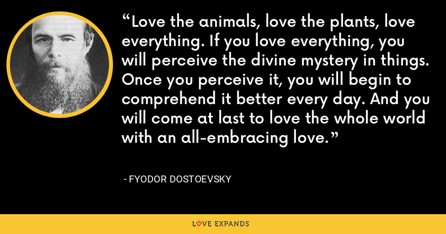 Love the animals, love the plants, love everything. If you love everything, you will perceive the divine mystery in things. Once you perceive it, you will begin to comprehend it better every day. And you will come at last to love the whole world with an all-embracing love. - Fyodor Dostoevsky