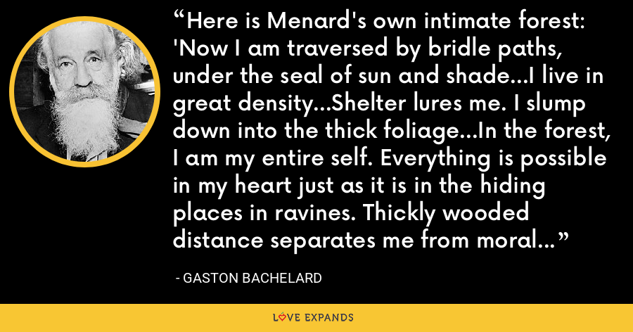 Here is Menard's own intimate forest: 'Now I am traversed by bridle paths, under the seal of sun and shade...I live in great density...Shelter lures me. I slump down into the thick foliage...In the forest, I am my entire self. Everything is possible in my heart just as it is in the hiding places in ravines. Thickly wooded distance separates me from moral codes and cities. - Gaston Bachelard