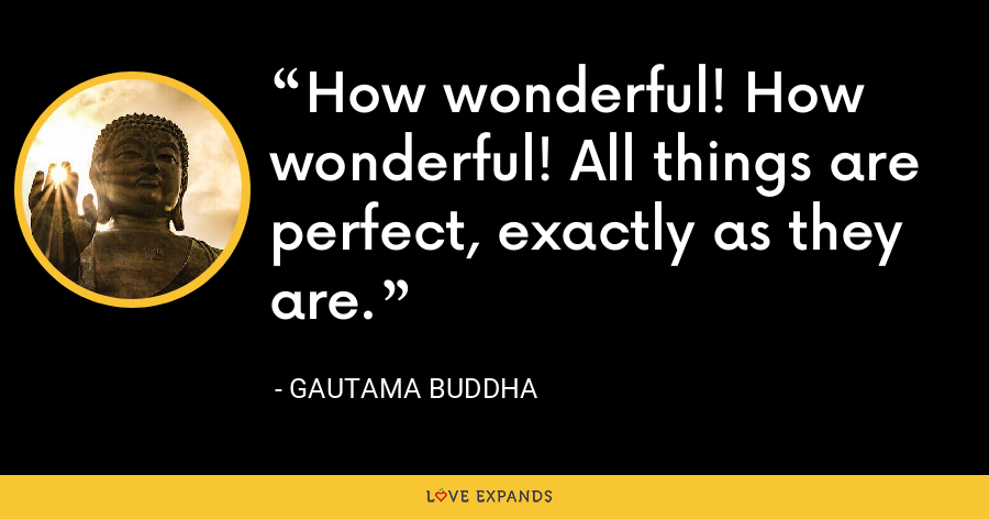How wonderful! How wonderful! All things are perfect, exactly as they are. - Gautama Buddha