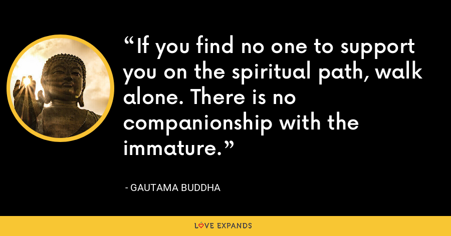 If you find no one to support you on the spiritual path, walk alone. There is no companionship with the immature. - Gautama Buddha