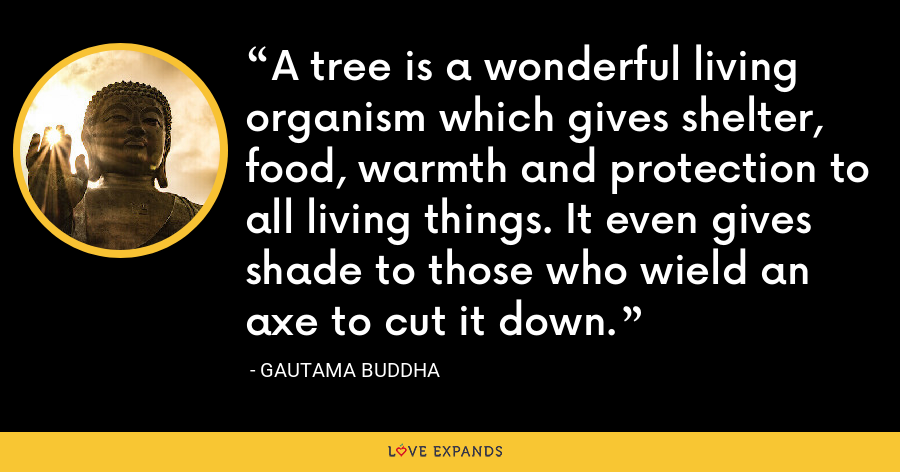 A tree is a wonderful living organism which gives shelter, food, warmth and protection to all living things. It even gives shade to those who wield an axe to cut it down. - Gautama Buddha