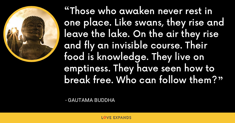 Those who awaken never rest in one place. Like swans, they rise and leave the lake. On the air they rise and fly an invisible course. Their food is knowledge. They live on emptiness. They have seen how to break free. Who can follow them? - Gautama Buddha