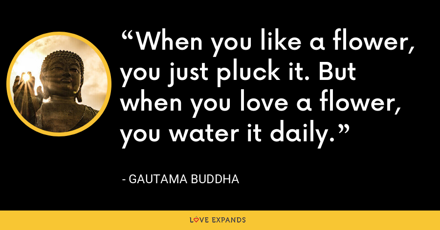 When you like a flower, you just pluck it. But when you love a flower, you water it daily. - Gautama Buddha