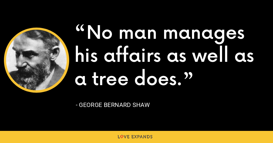 No man manages his affairs as well as a tree does. - George Bernard Shaw