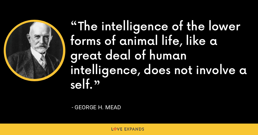 The intelligence of the lower forms of animal life, like a great deal of human intelligence, does not involve a self. - George H. Mead