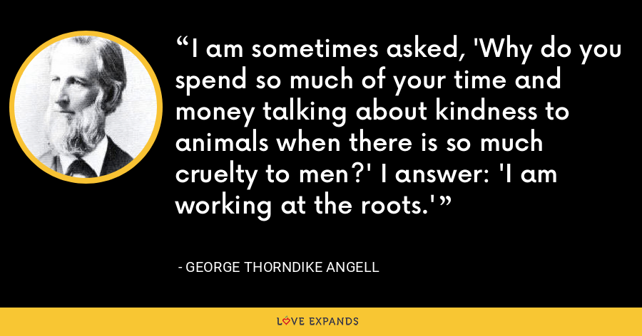 I am sometimes asked, 'Why do you spend so much of your time and money talking about kindness to animals when there is so much cruelty to men?' I answer: 'I am working at the roots.' - George Thorndike Angell