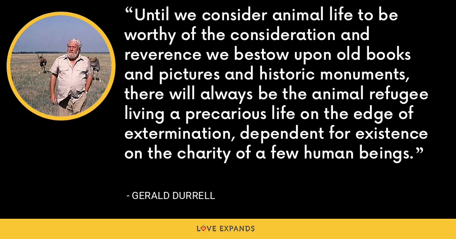 Until we consider animal life to be worthy of the consideration and reverence we bestow upon old books and pictures and historic monuments, there will always be the animal refugee living a precarious life on the edge of extermination, dependent for existence on the charity of a few human beings. - Gerald Durrell