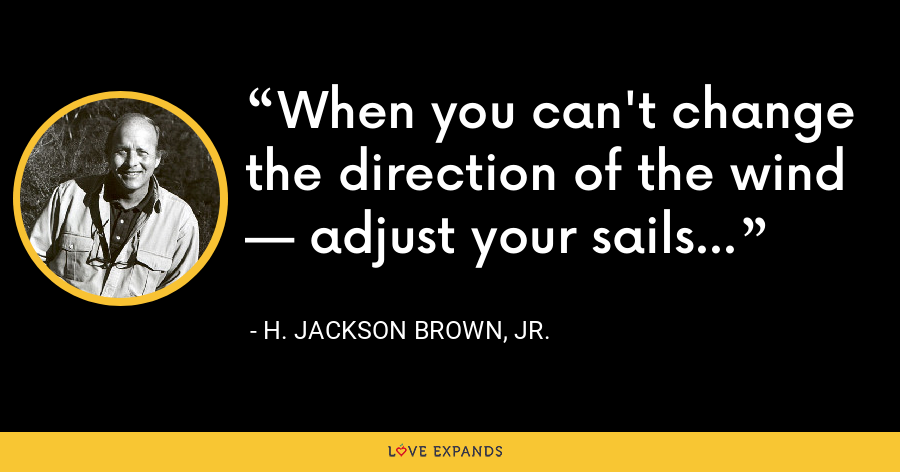 When you can't change the direction of the wind — adjust your sails - H. Jackson Brown, Jr.
