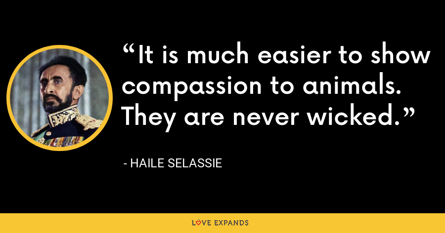 It is much easier to show compassion to animals. They are never wicked. - Haile Selassie