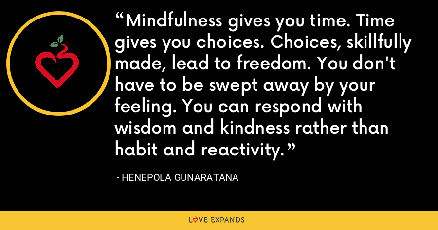 Mindfulness gives you time. Time gives you choices. Choices, skillfully made, lead to freedom. You don't have to be swept away by your feeling. You can respond with wisdom and kindness rather than habit and reactivity. - Henepola Gunaratana