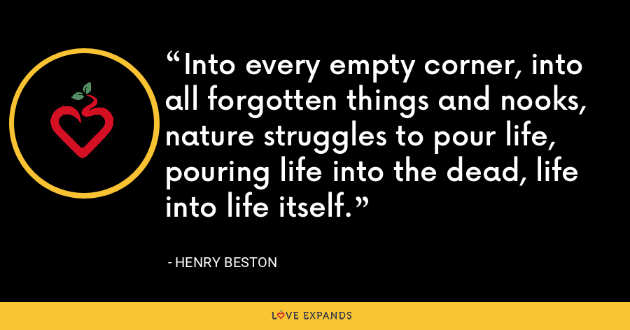 Into every empty corner, into all forgotten things and nooks, nature struggles to pour life, pouring life into the dead, life into life itself. - Henry Beston