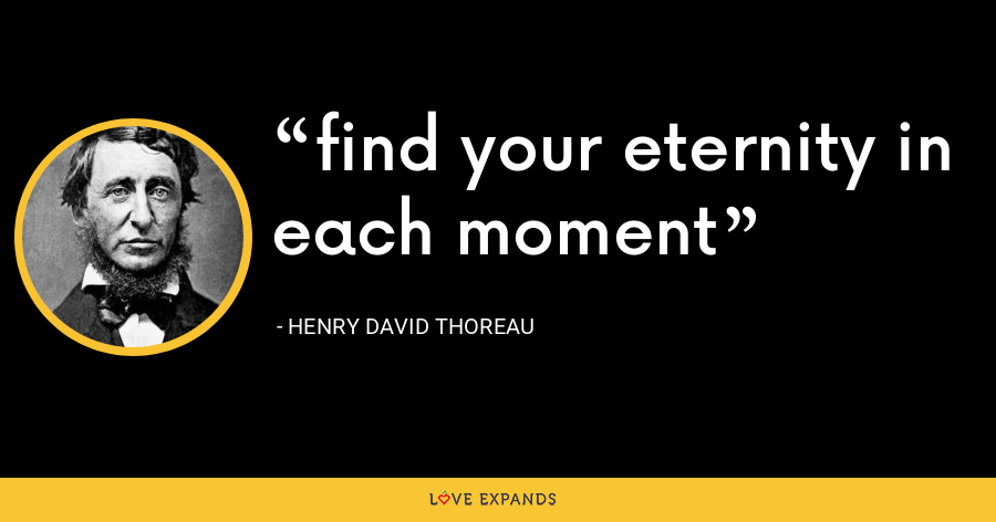 find your eternity in each moment - Henry David Thoreau