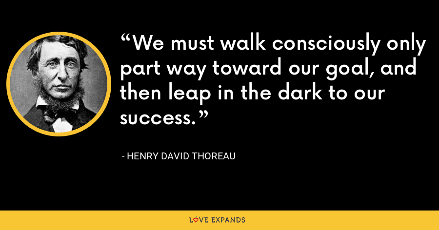 We must walk consciously only part way toward our goal, and then leap in the dark to our success. - Henry David Thoreau