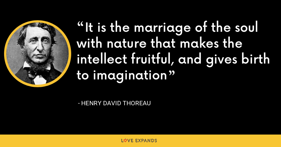 It is the marriage of the soul with nature that makes the intellect fruitful, and gives birth to imagination - Henry David Thoreau