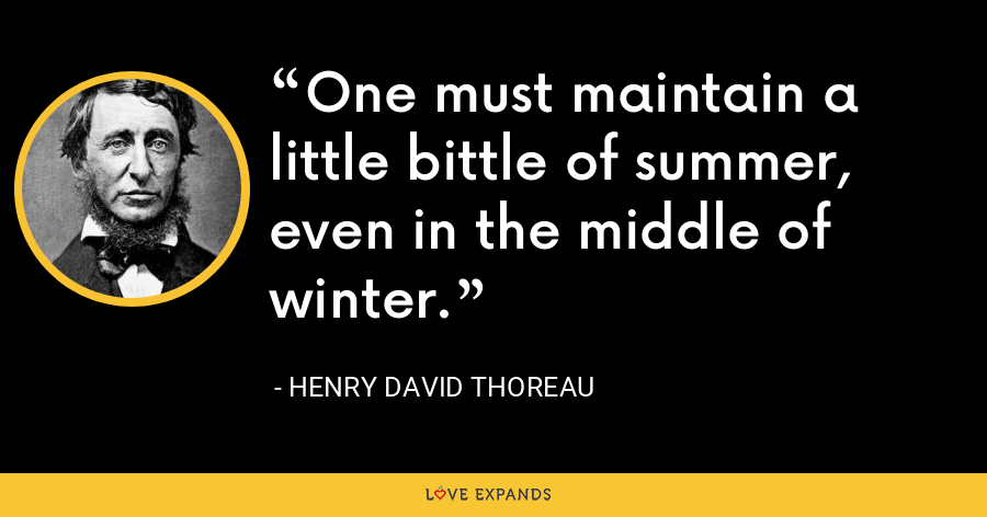 One must maintain a little bittle of summer, even in the middle of winter. - Henry David Thoreau