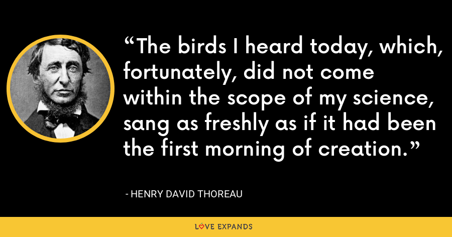 The birds I heard today, which, fortunately, did not come within the scope of my science, sang as freshly as if it had been the first morning of creation. - Henry David Thoreau